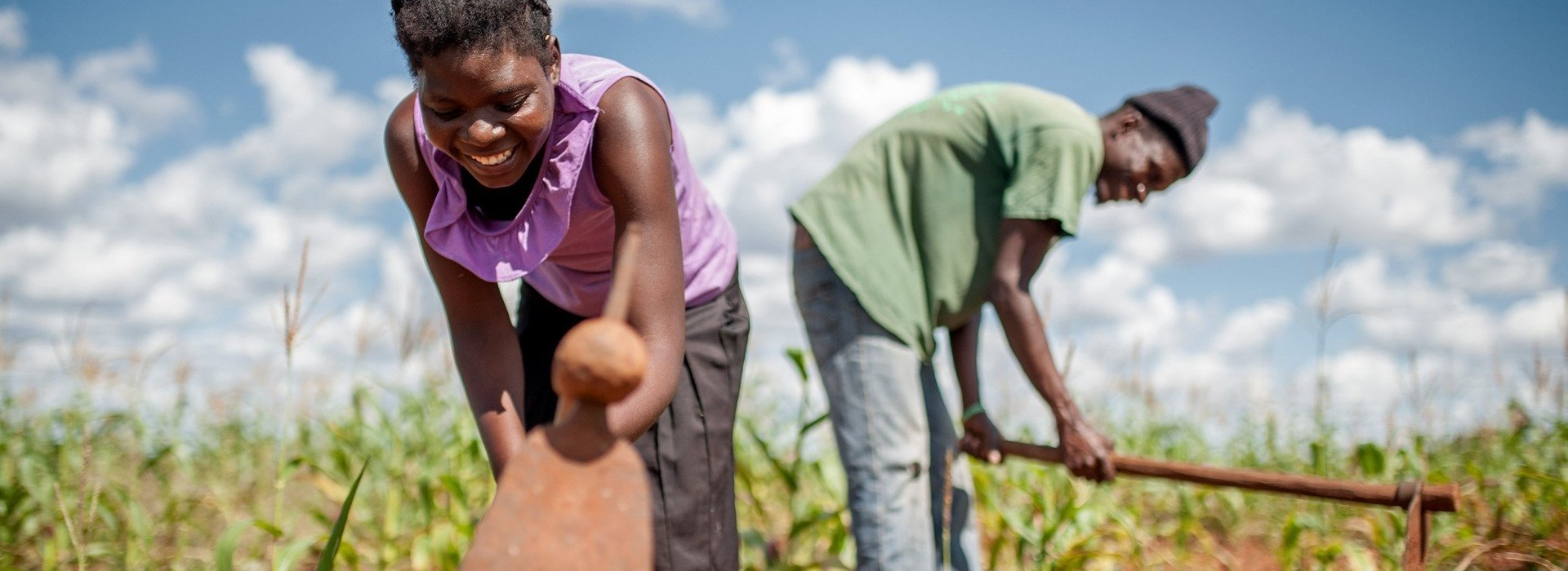 A woman and man cultivating the soil in their field