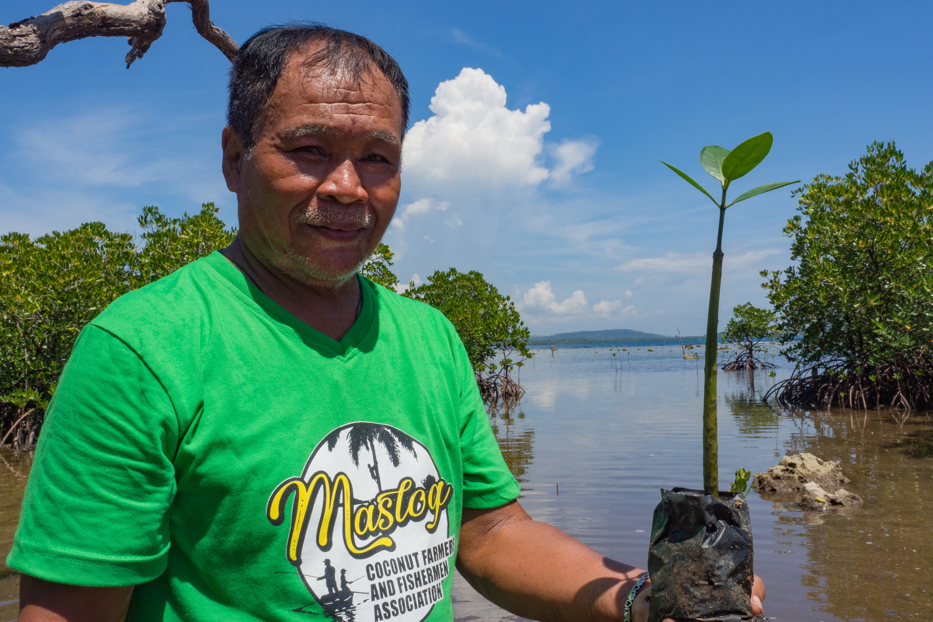 Pedro Calumpiano, President of the Maslog Coconut Farmer and Fishermen Association, holding a mangrove sapling grown in the organization's nursery. 'As time goes by, climate change will worsen, and those who will be most affected are our children.' (Photo: Elizabeth Stevens / Oxfam)